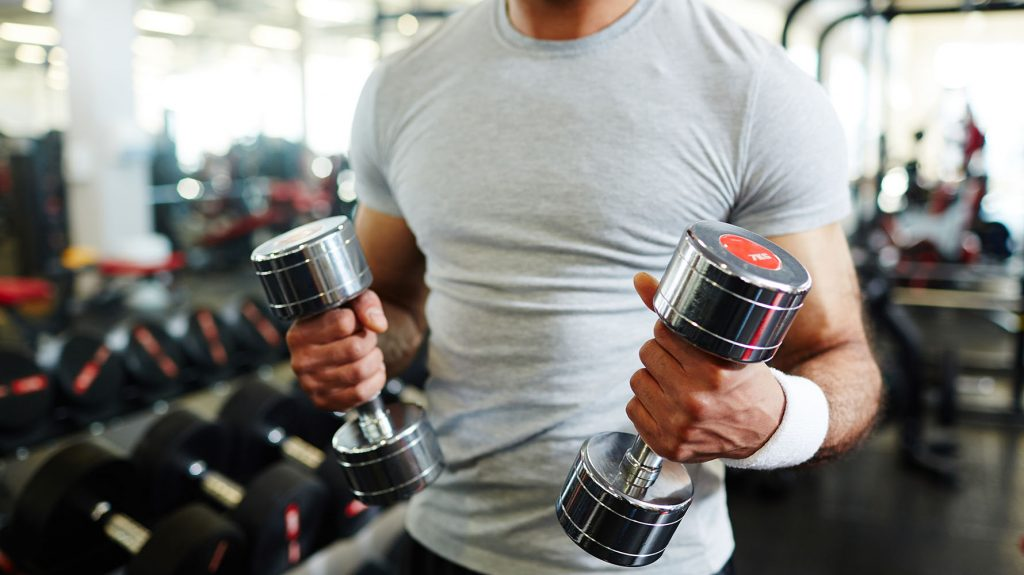 best brachialis exercises for bodybuilding