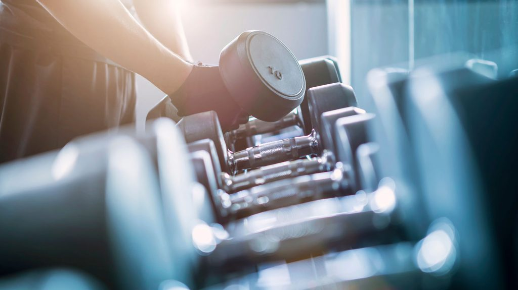 brachialis muscle exercises