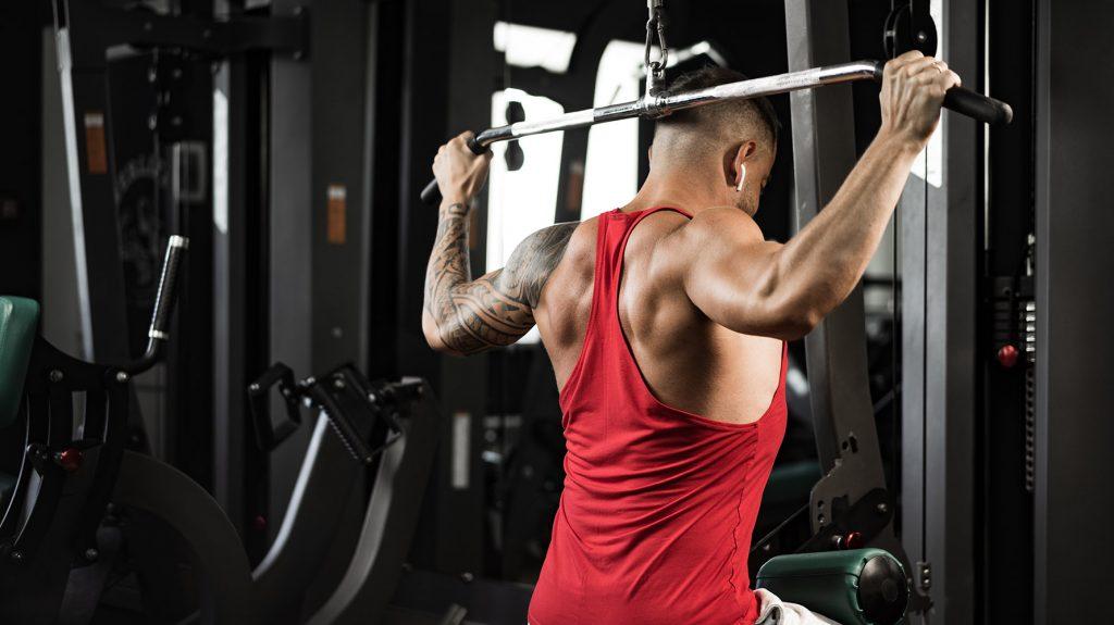 best rhomboid exercises bodybuilding